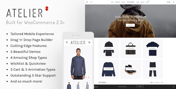 ecommerce-wordpress-themes5