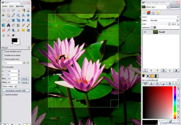 Top 10 best alternatives to adobe illustrator developer Free illustrator alternative