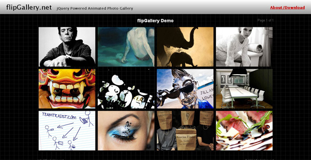 flip-gallery