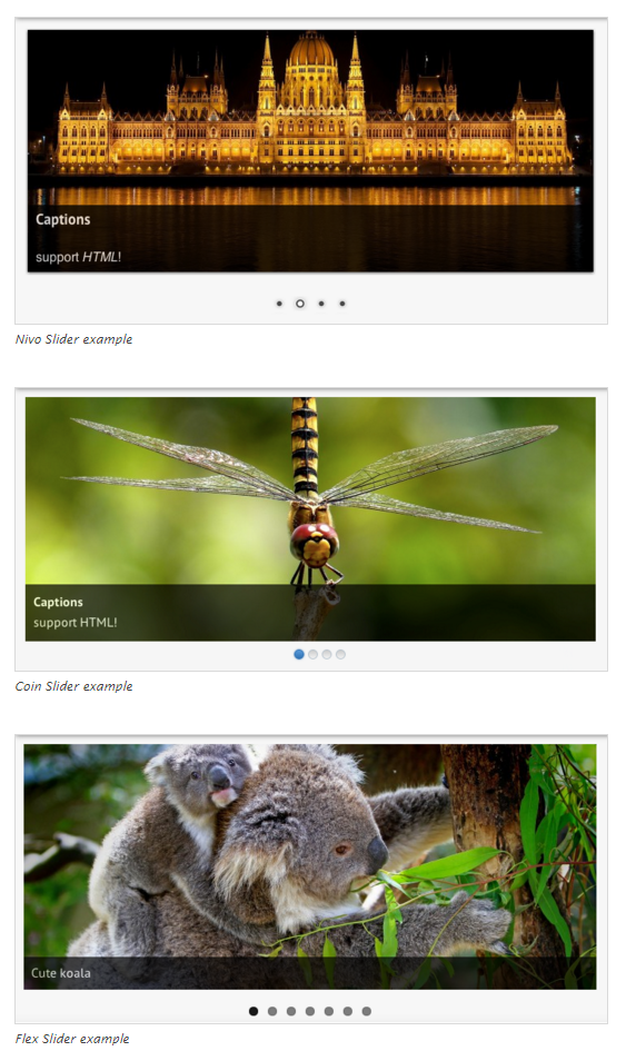 wordpress-slideshow-plugins23