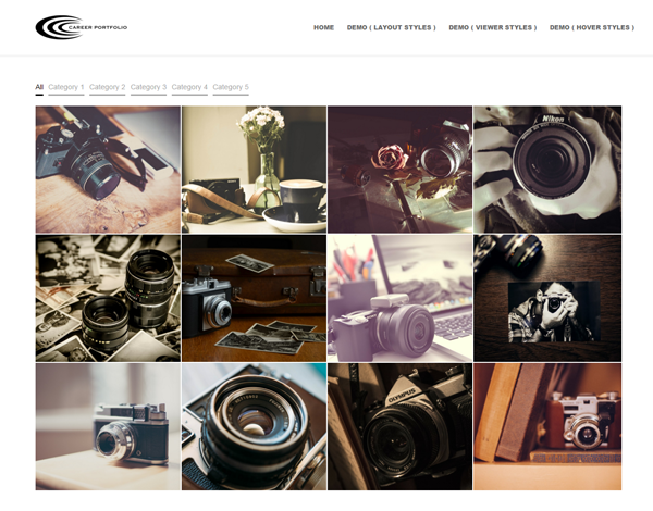 portfolio-wordpress-plugins2