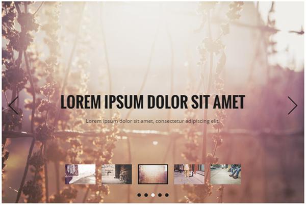 wordpress-slideshow-plugins12
