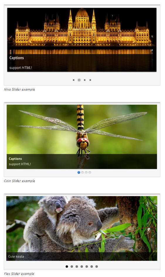 wordpress-slideshow-plugins23
