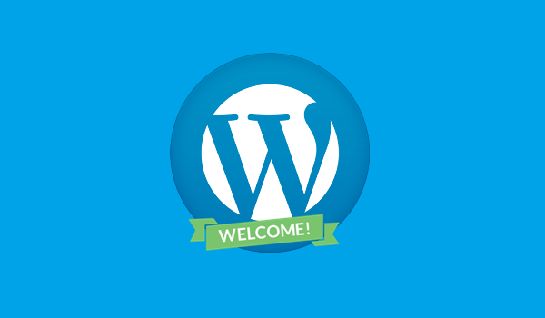 Basic Guide for Newcomers to Understand WordPress Better