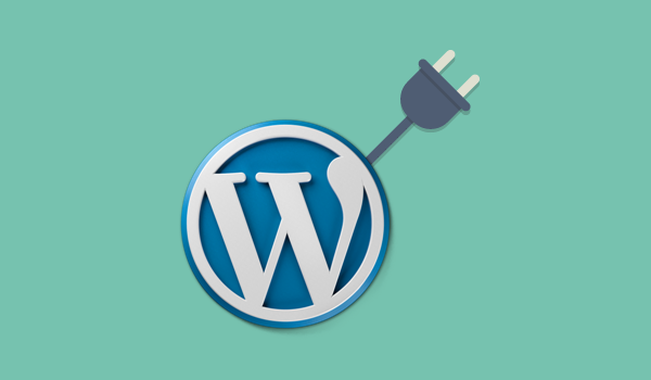 Basic Guide for Newcomers to Understand WordPress Better - Plugin
